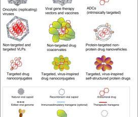 Dr. A. Villaverde: Protein-driven nanomedicines in oncotherapy