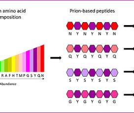 Dissenyen bioestructures mínimes per crear nanomaterials
