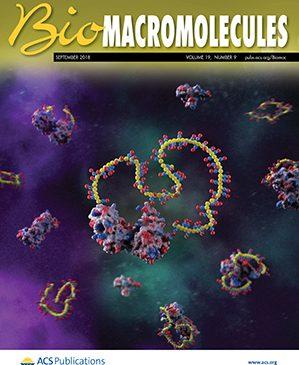Dr. A. Villaverde: Conformational Conversion during Controlled Oligomerization into Nonamylogenic Protein Nanoparticles