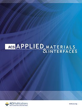 Dr. A. Villaverde: Engineering a Nanostructured Nucleolin-Binding Peptide for Intracellular Drug Delivery in Triple-Negative Breast Cancer Stem Cells